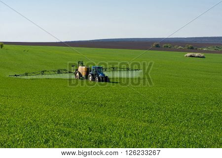 Tractor Spraying Pesticide In A Field Of Wheat