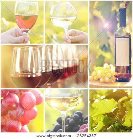 Collage with beautiful wine images, outdoors.
