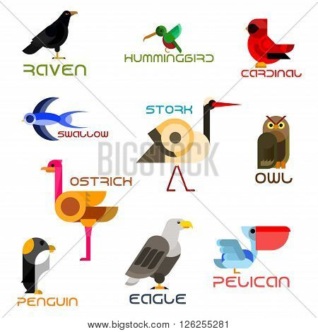 Owl, eagle, swallow, pelican, hummingbird, penguin, ostrich, raven, cardinal, stork colorful birds flat icons. Cartoon wild, forest, aquatic, tropical and urban birds for nature mascot, zoo symbol and wildlife theme design