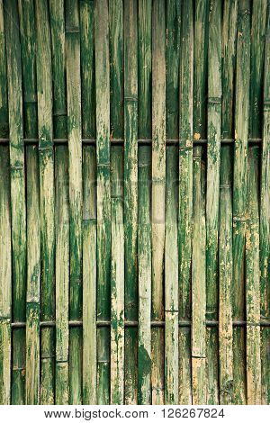 Green Dry Bamboo