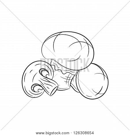 Champignon. Vector hand drawn champignon illustration isolated on white background - stock vector