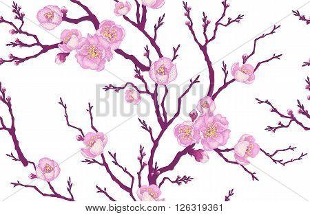 Seamless vector floral pattern. Illustration sakura branch in Victorian style. Vintage luxury decoration of sakura branch. Series flower design in unique technique. Sakura branch on white background.