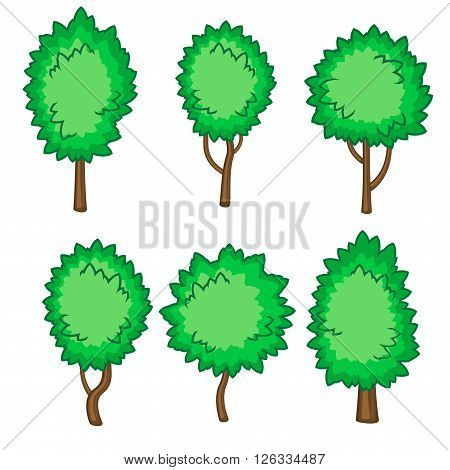 Set of six fluffy young trees isolated over white