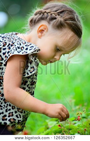 Little girl eating strawberry outdoors, summer time