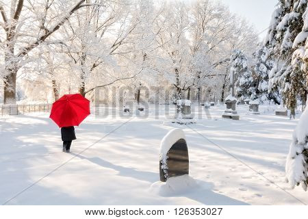 A beautiful winter snow scene with a woman walking in a cemetery with a red umbrella as the snow clings to the trees.