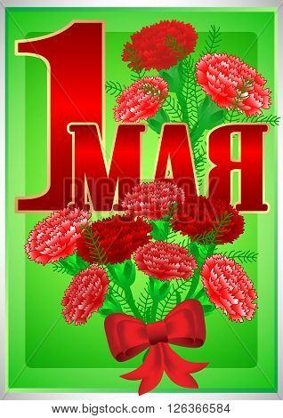 Postcard for holiday of Spring and Labor. Mayday. May 1 with bouquets of red carnations on green background. Russian translation: 1 may. Vector illustration