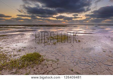 Tidal Marsh Mud Flat