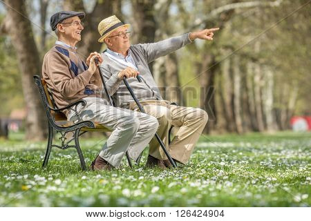 Senior showing something in the distance to his friend seated on a bench in park