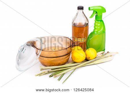 Apple Cider Vinegar, Lemon,  Lemongrass Effective Insect Repellent Home Formula