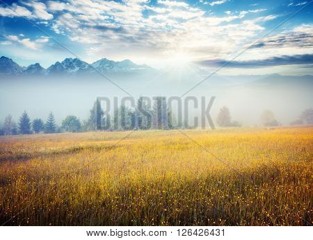 A tranquil view of the snow ridge which glowing by sunlight. Dramatic and picturesque morning scene. Location place: Georgia, Caucasus, Europe. Artistic picture. Beauty world. Soft filter effect.