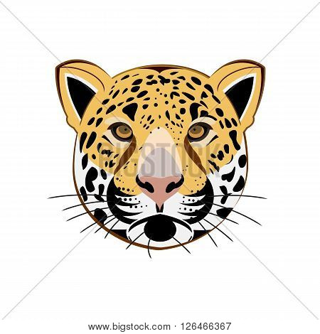 Leopard Portrait. Angry Leopard wild big cat, Leopard head. Cute Leopard face, African Leopard Cat. Aggressive Leopard with bared teeth, Leopard in cartoon style, cat tattoo, t-shirt print design