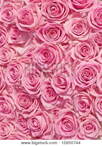 big bunch of multiple pink roses of a bride on a wedding from top, of bridal photos series