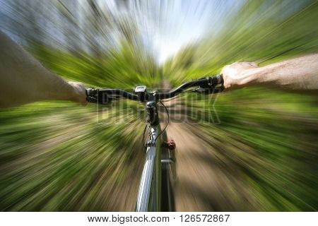 Male cyclist traveling through the woods in early spring.