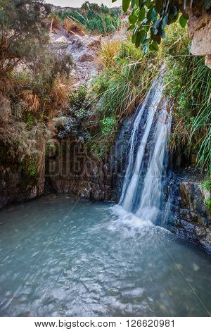 Beautiful waterfall and small scenic lake with clear water. Walk in the national park Ein Gedi, Israel