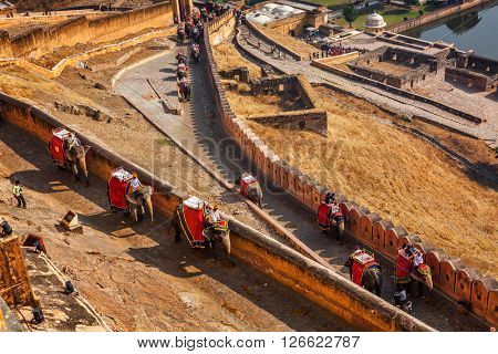 AMER, INDIA - NOVEMBER 18, 2012: Tourists riding elephants on ascend to Amer (Amber) fort, Rajasthan, India. Amer fort is famous tourist destination and landmark