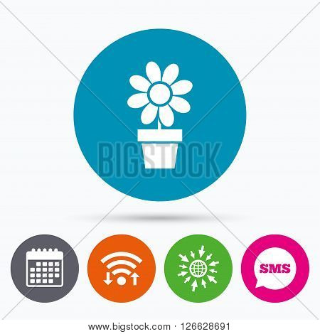 Wifi, Sms and calendar icons. Flowers in pot icon. Bouquet of flowers with petals. Macro sign. Go to web globe.
