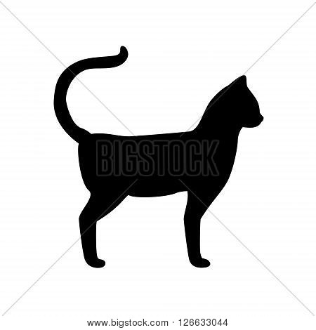 Vector illustration black silhouette of walking cat isolated on white background. Cat icon
