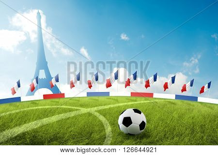 The soccer field in France 3d Illustration