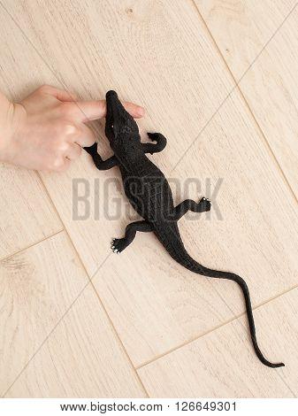 Toy Crocodile Bites The Hand