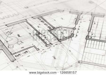 architecture blueprint -  house plan