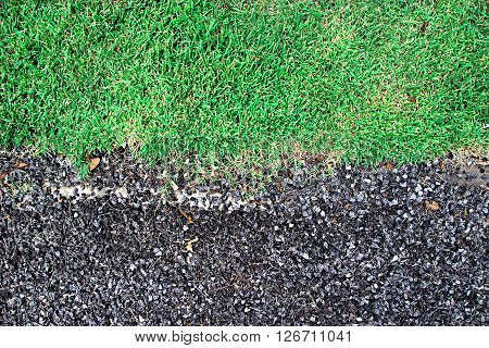 Bedrock Mixer and Green grass ,texture background