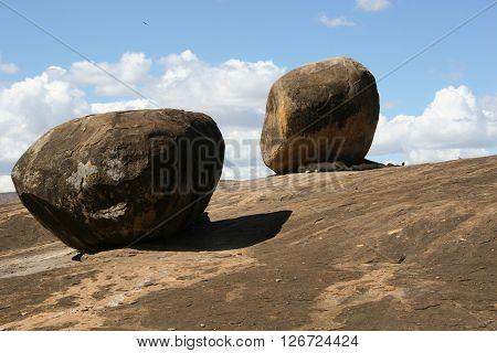Sleeping Lion Under Rock Wild Dangerous Mammal Africa Savannah Kenya