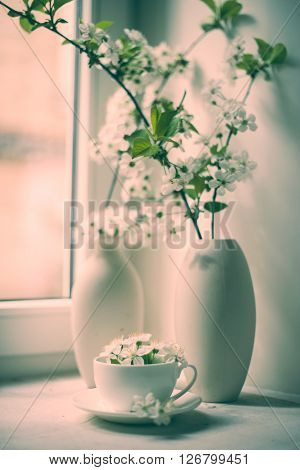 Cherry blossom in a white vase on a windowsill, vintage style spring home decor
