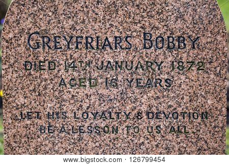 EDINBURGH SCOTLAND - MARCH 9TH 2016: A close-up of the grave of Greyfriars Bobby in Greyfriars Cemetery in Edinburgh on 9th March 2016.