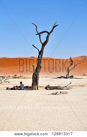 DEADVLEI NAMIBIA - JAN 29 2016: Tourists resting in shadow of the dead camelthorn tree in Deadvlei Sossusvlei. Namib-Naukluft National Park Namibia Africa