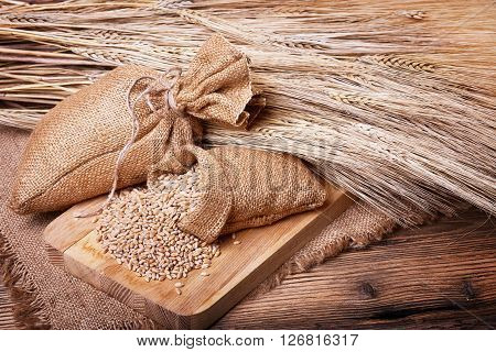 Fresh bread, baked goods, harvest on the farm, delicious food, ears of wheat, burlap sack of grain, healthy food, a table of old wood, close-up corn, wheat grain spillage