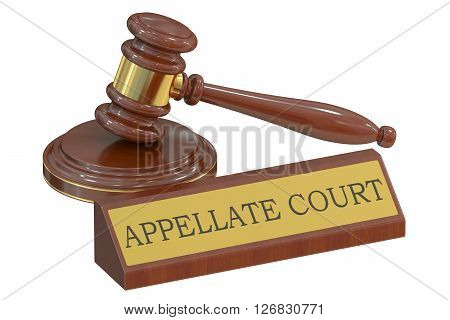 appellate court concept with gavel. 3D rendering