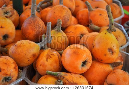 Common Medlar Fruit