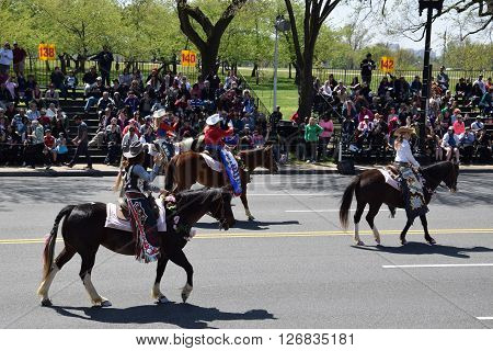 WASHINGTON, DC - APR 16: Horses at the 2016 National Cherry Blossom Parade in Washington DC, as seen on April 16, 2016. Thousands of visitors gathered to attend this annual event. ** Note: Visible grain at 100%, best at smaller sizes