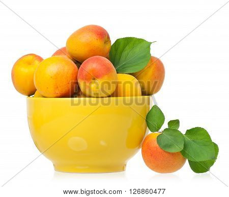 Ripe apricots in a bawl isolated on a white background