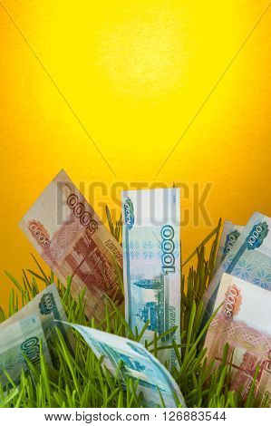 Investment growth: russian ruble bills in green grass. Appreciation of ruble. Financial concept.