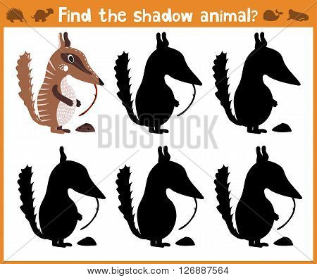 Cartoon vector illustration of education will find appropriate shadow silhouette animal anteater. Matching game for children of preschool age. Vector illustration