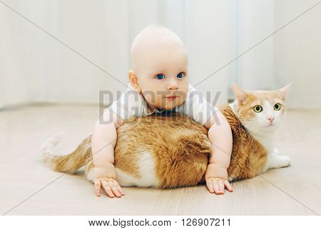 Baby crawls plays with cat at home on floor poster