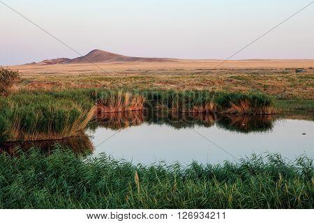 Lake oasis. The reeds and grasslands landscape. Baskunchak Bogdo summer evening