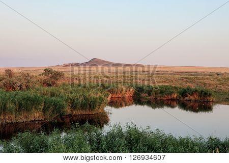 Baskunchak Bogdo lake oasis. The reeds and grasslands landscape. Evening