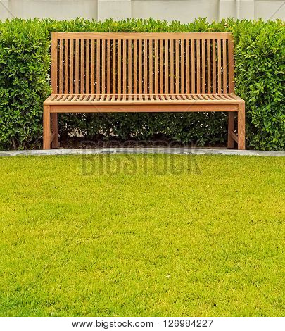 Wooden bench in green bush in front of white wall