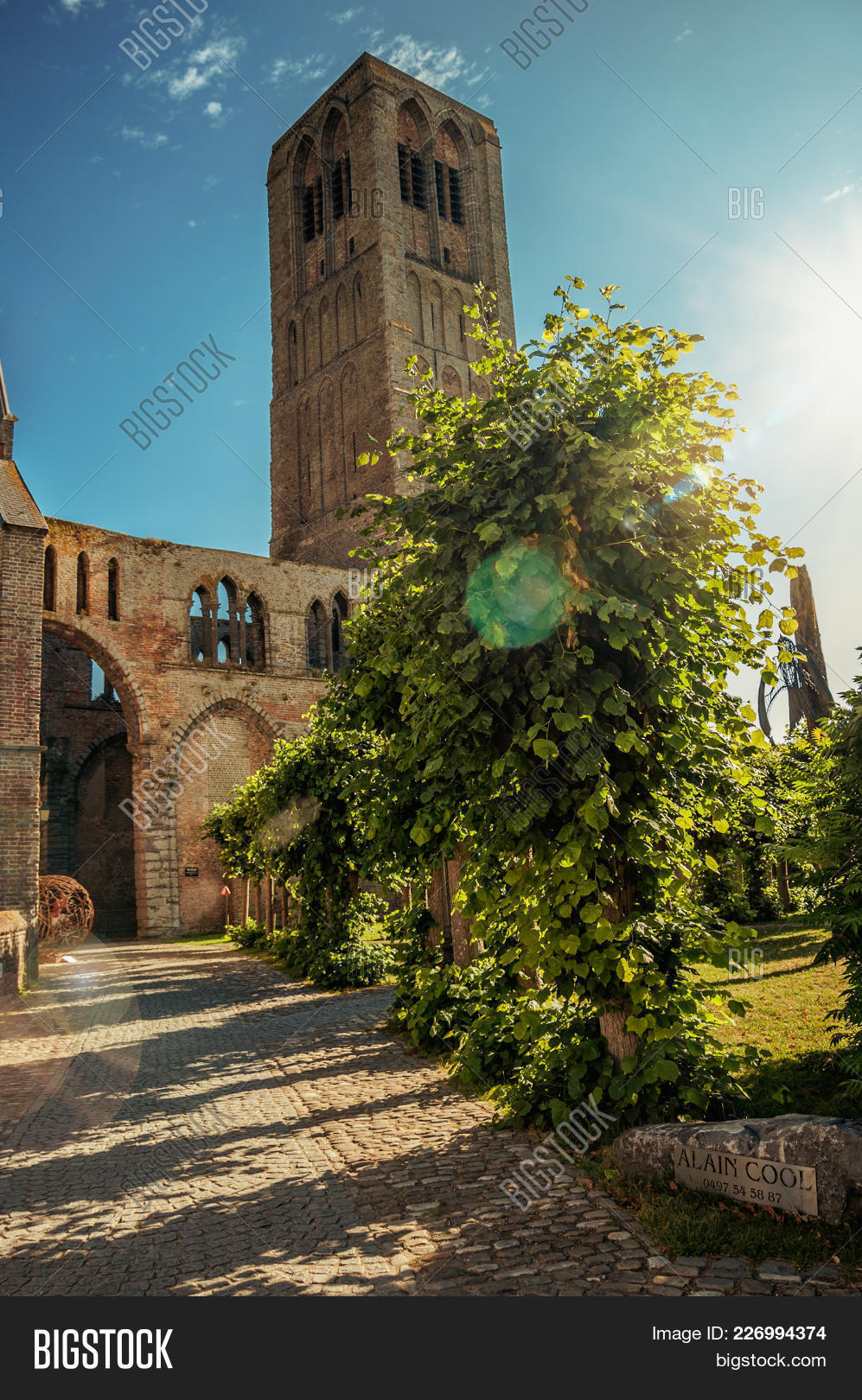 Pathway Trees Garden Image & Photo (Free Trial) | Bigstock