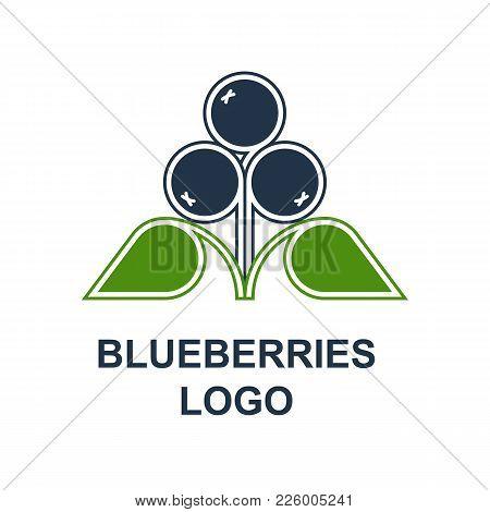 Blueberries Or Bilberries With Leaves Logotype Design Concept In Minimalist Style. Wild Forest Berri