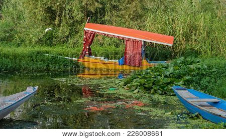 For Centuries The Shikara Have Been Serving As The Taxi Boats On The Dal Lake.