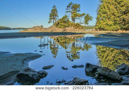 Walk On Tofino Beach In Vancouver Island, Canada, Beatiful Morning On Tofino Beach, Jungle Walk To P