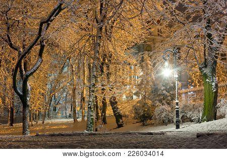 Beautiful Walkway In Illuminated Night Winter Ivan Franko Park (lviv City Center, Ukraine).