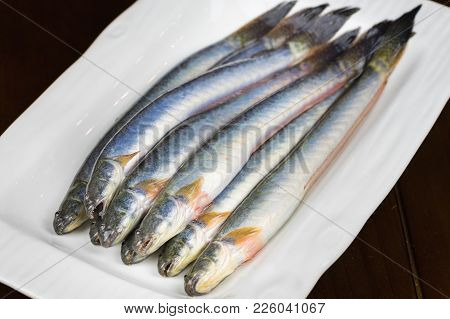 Pseudapocryptes Elongatus Fish, Food For Eating Hot Pot, The Famous Food In Mekong Delta, Vietnam