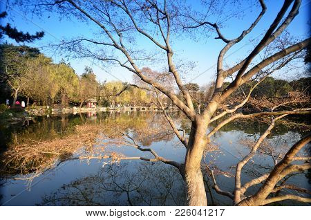 Hangzhou, China - Dec 26, 2017: People Are Walking Along The Embankment Of The West Lake In Hangzhou