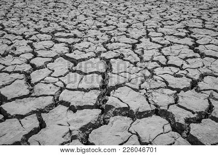 Dry And Cracked Ground In Tay Nguyen, Central Highlands Of Vietnam. Monochrome