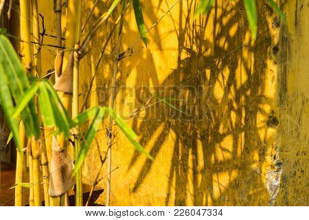 Bamboo With Shadow On Yellow Wall. Focus On The Wall