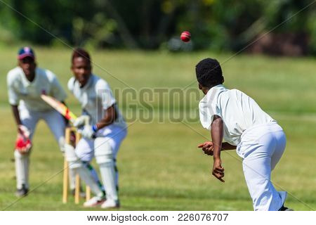 Cricket Action Players Abstract